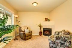 与两个扶手椅子和壁炉的舒适家庭娱乐室内部 库存图片