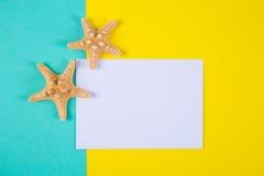与两个海星的空的纸板料在色的背景机智 图库摄影