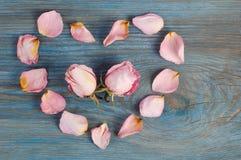 与两头状花序的桃红色玫瑰花瓣想象心脏形状里面在蓝色木板 免版税库存图片