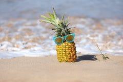 与个性的热闹的菠萝在海洋在毛伊 免版税库存图片