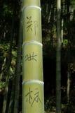 与中国信件的竹子 免版税库存图片