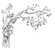 与中国灯笼的树枝 皇族释放例证