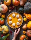 与为感恩做的打好的奶油的欢乐自创南瓜饼,万圣夜 顶视图 秋天栗子装饰葡萄10月石榴木头 图库摄影