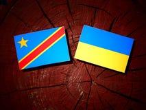 与乌克兰旗子的刚果民主共和国旗子在t 免版税库存图片