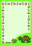 与乌龟的信件 库存照片