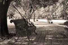 与乌贼属的葡萄酒椅子 免版税库存照片