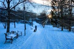 与乘坐他的孩子的父亲的冬天场面一个雪撬在早晨阳光下 免版税库存照片