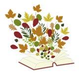 与书和叶子的秋天背景 库存图片