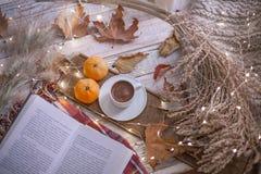 与书的秋天舒适天 库存照片