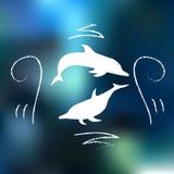 与乱画的海豚 免版税库存照片