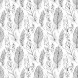 与乱画羽毛的传染媒介无缝的单色样式 免版税库存照片