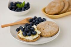 与乳清干酪、蜂蜜和蓝莓的拉伊小面包干 免版税库存照片