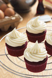 与乳脂干酪结霜的红色天鹅绒杯形蛋糕 库存图片