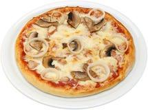 与乳酪蕃茄蘑菇鸡的薄饼Katanas 库存照片