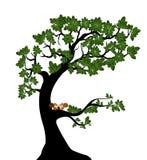 与事假的在分支的树和灰鼠 免版税图库摄影