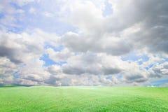 与云彩和草的完善的天空在公园 免版税库存照片