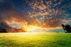 与云彩和草的日出天空 库存图片