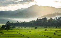 与云彩和薄雾的美好的风景早晨 免版税库存照片