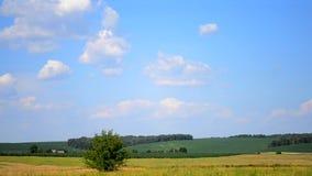 与云彩的天空在领域在一个热的夏日 股票录像