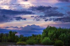 与云彩的晚上天空在绿色森林 图库摄影