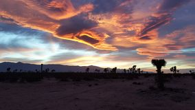与云彩的沙漠日落 免版税库存图片