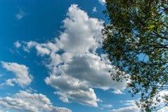 与云彩的蓝天在一个夏日 免版税库存照片