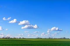 与云彩的蓝天在一个宽绿色国家风景 免版税图库摄影