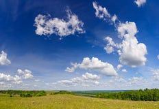 与云彩的蓝天在一个开花的草甸在夏天 免版税库存图片