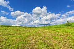 与云彩的蓝天在草甸 库存图片