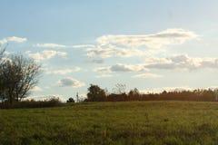 与云彩的象草的草甸风景 库存图片