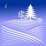 与云杉的农村冬天晚上风景 库存图片