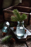 与云杉的分支的静物画在一个玻璃瓶 库存照片