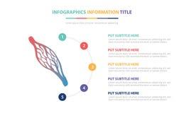 与五点的人的血丝infographic模板概念列出和各种各样的颜色有干净的现代白色背景- 库存例证