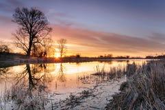 与五颜六色的云彩的日出在树包围的一个狂放的池塘在秋天早晨 免版税图库摄影