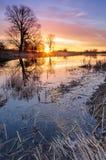与五颜六色的云彩的日出在树包围的一个狂放的池塘在秋天早晨 免版税库存图片