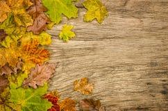 与五颜六色的叶子的土气木背景 库存图片