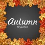 与五颜六色的叶子的秋天您的文本的框架和空间 秋天您的设计的传染媒介模板 秋天背景特写镜头上色常春藤叶子橙红 库存照片
