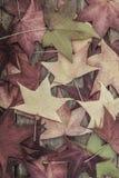 与五颜六色的叶子的秋天模板木表面上 库存照片