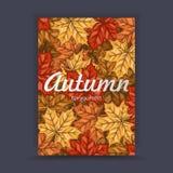 与五颜六色的叶子的秋天飞行物有您的文本的空间的 印刷品的横幅设计 也corel凹道例证向量 免版税图库摄影