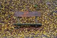 与五颜六色的叶子的长凳 库存图片