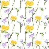 与五颜六色的小苍兰花和芽的无缝的样式 织品墙纸在白色背景的印刷品纹理 皇族释放例证