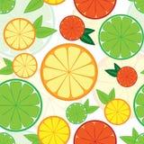 与五颜六色的柑橘的无缝的样式 免版税库存图片