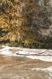 与五颜六色的树和河急流的秋天风景在阳光下 免版税库存照片
