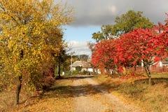 与五颜六色的树的秋天在村庄 库存照片