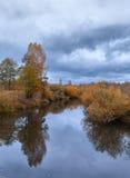 与五颜六色的树的美好的秋天河风景 免版税库存照片