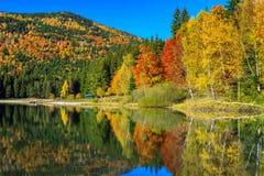 与五颜六色的森林, St阿那湖,特兰西瓦尼亚,罗马尼亚的秋天风景 免版税图库摄影