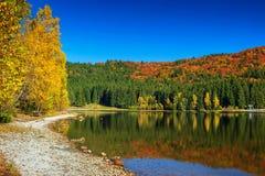 与五颜六色的森林, St阿那湖,特兰西瓦尼亚,罗马尼亚的秋天风景 免版税库存图片