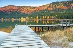 与五颜六色的森林, St Anna湖,特兰西瓦尼亚,罗马尼亚,欧洲的秋天风景 免版税库存照片