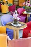 与五颜六色的椅子的现代酒吧内部 免版税图库摄影