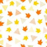 与五颜六色的槭树的无缝的样式在白色backgro离开 图库摄影